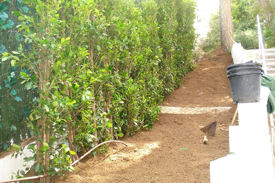 ridos jardiner a mallorca cantera can casetes